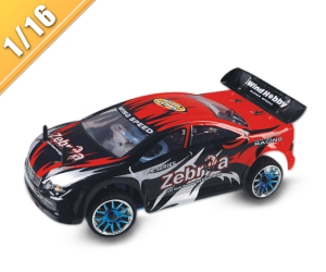 1/16 scale nitro power on-road racing car TPGC-1662