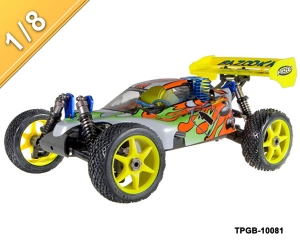 1/8 scale Nitro Power off-Road Buggy TPGB-10081