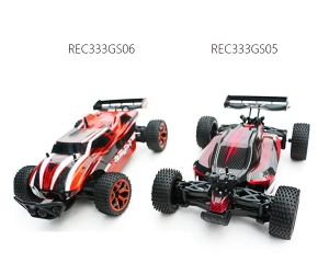 2.4G 4WD1:18 High Speed RC Car Truck REC333GS05