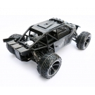 China 1:10 high speed car   REC68160702 factory