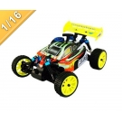 China 1/16 scale 4WD Nitro power Off-Road Buggy TPGB-10285 factory