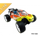 China 1/16 scale 4wd nitro power off-road truggy TPGT-10283 factory