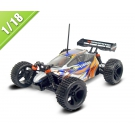 China 1/18 scale 4WD electric power off-road buggy TPET-1805 factory