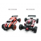 China 2.4G 4WD1:18 High Speed RC Car Truck REC333GS05 factory