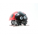 China 2.4G DIY ladybug Robot        F10 factory